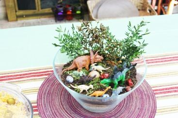 I remember how much you enjoyed making this terrarium!